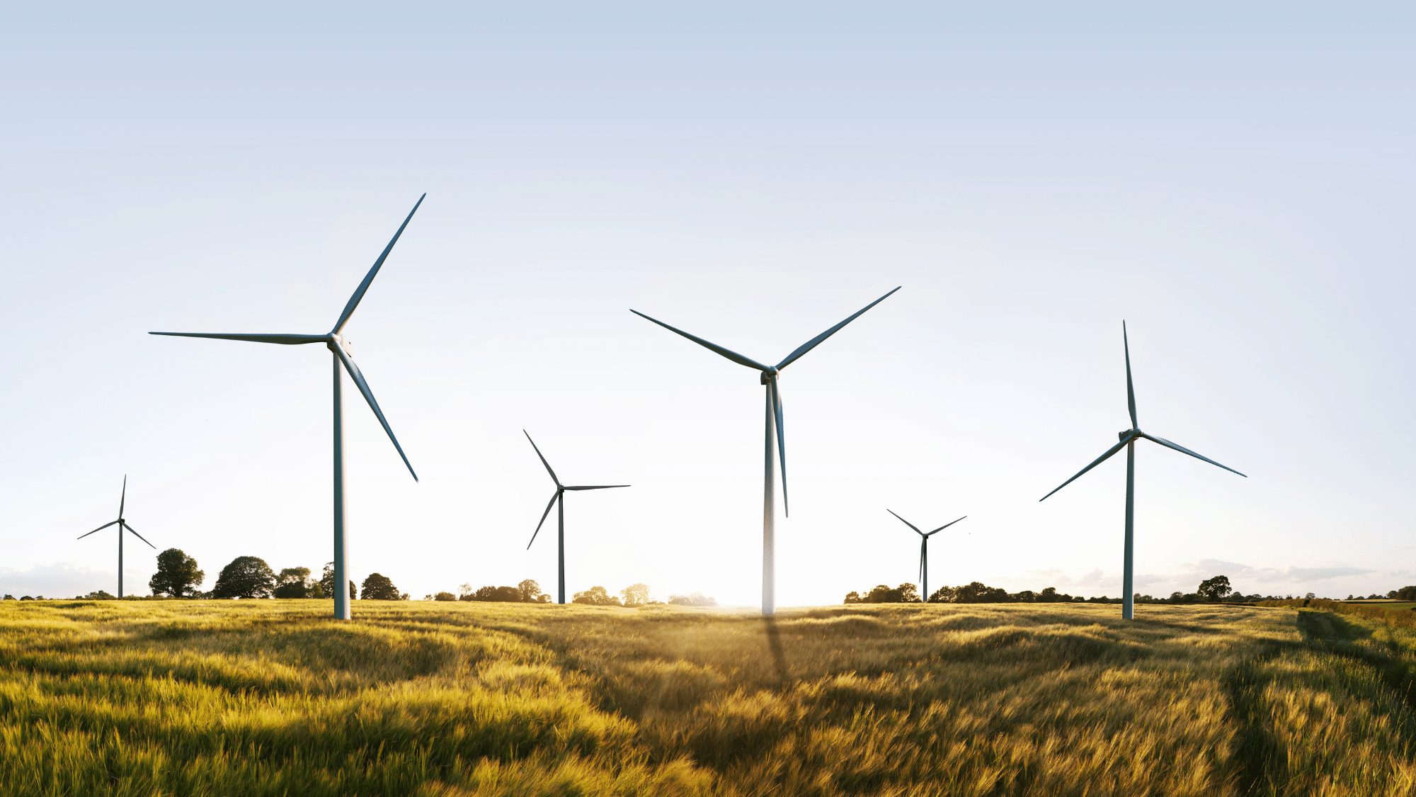 The stocks that will help you ride the clean energy wave