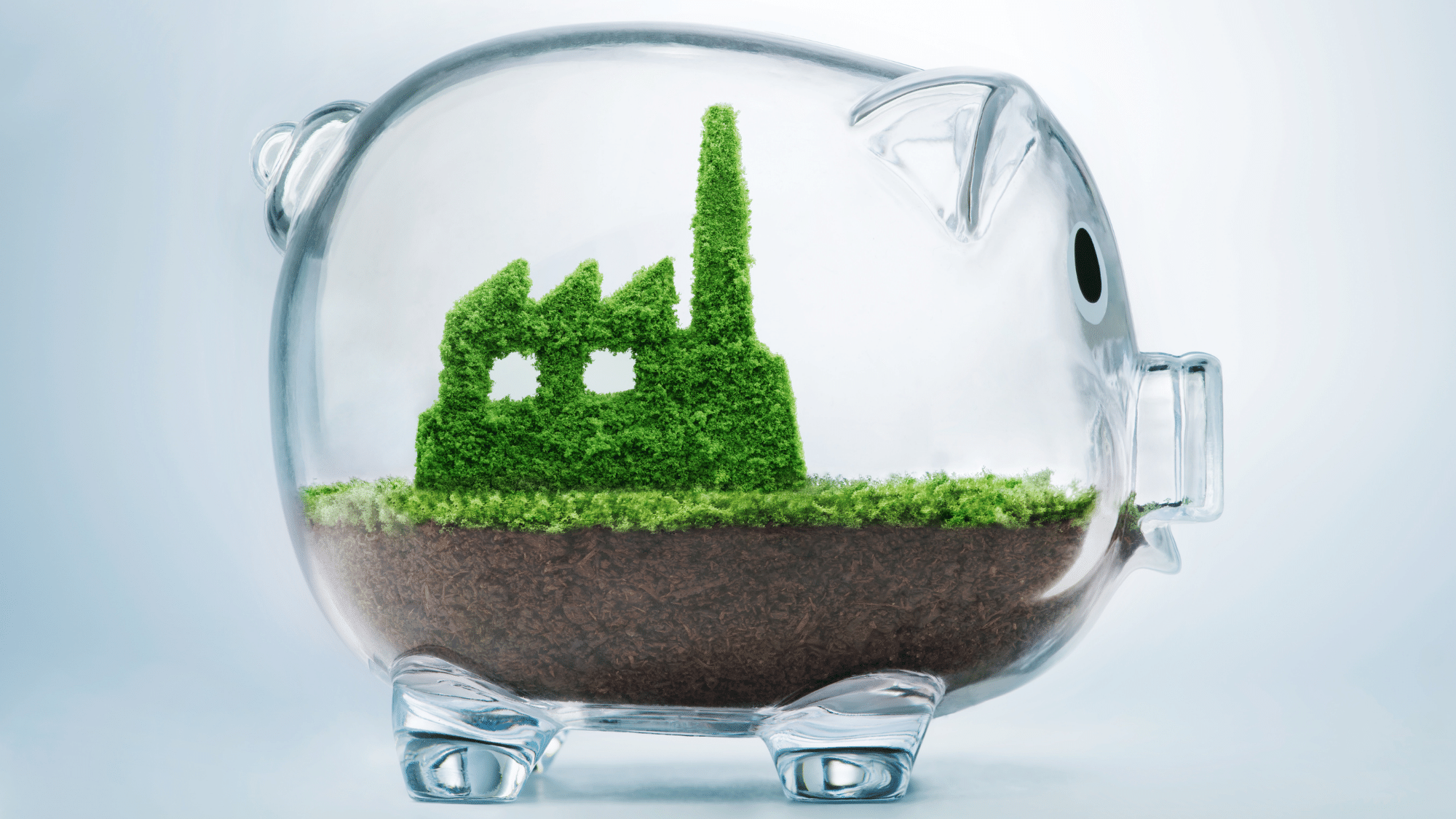 Beckon Capital: It's about profit through impact